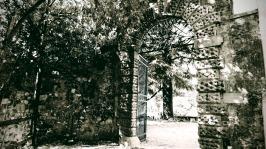 Schwarzweiß11